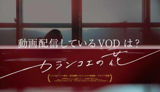 映画「カランコエの花」の動画を無料でフル視聴できるVODはコレ!
